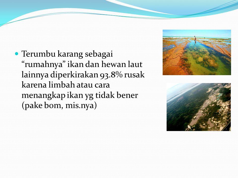 Terumbu karang sebagai rumahnya ikan dan hewan laut lainnya diperkirakan 93.8% rusak karena limbah atau cara menangkap ikan yg tidak bener (pake bom, mis.nya)