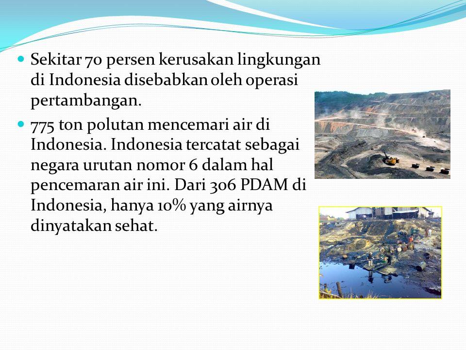 Sekitar 70 persen kerusakan lingkungan di Indonesia disebabkan oleh operasi pertambangan. 775 ton polutan mencemari air di Indonesia. Indonesia tercat