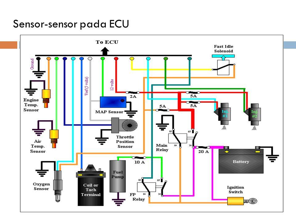 Sensor-sensor pada ECU