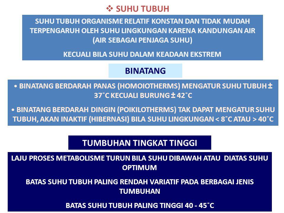  SUHU TUBUH SUHU TUBUH ORGANISME RELATIF KONSTAN DAN TIDAK MUDAH TERPENGARUH OLEH SUHU LINGKUNGAN KARENA KANDUNGAN AIR (AIR SEBAGAI PENJAGA SUHU) KECUALI BILA SUHU DALAM KEADAAN EKSTREM TUMBUHAN TINGKAT TINGGI LAJU PROSES METABOLISME TURUN BILA SUHU DIBAWAH ATAU DIATAS SUHU OPTIMUM BATAS SUHU TUBUH PALING RENDAH VARIATIF PADA BERBAGAI JENIS TUMBUHAN BATAS SUHU TUBUH PALING TINGGI 40 - 45˚C BINATANG BINATANG BERDARAH PANAS (HOMOIOTHERMS) MENGATUR SUHU TUBUH ± 37˚C KECUALI BURUNG ± 42˚C BINATANG BERDARAH DINGIN (POIKILOTHERMS) TAK DAPAT MENGATUR SUHU TUBUH, AKAN INAKTIF (HIBERNASI) BILA SUHU LINGKUNGAN 40˚C