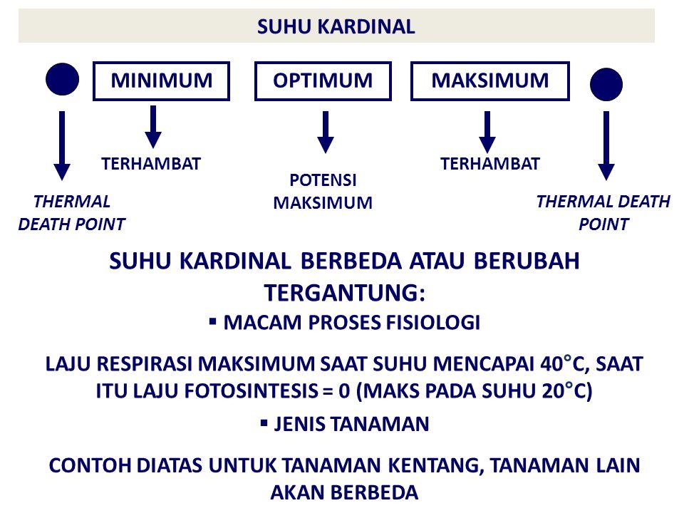 SUHU KARDINAL MINIMUMOPTIMUMMAKSIMUM POTENSI MAKSIMUM TERHAMBAT THERMAL DEATH POINT SUHU KARDINAL BERBEDA ATAU BERUBAH TERGANTUNG:  MACAM PROSES FISIOLOGI LAJU RESPIRASI MAKSIMUM SAAT SUHU MENCAPAI 40 ° C, SAAT ITU LAJU FOTOSINTESIS = 0 (MAKS PADA SUHU 20 ° C)  JENIS TANAMAN CONTOH DIATAS UNTUK TANAMAN KENTANG, TANAMAN LAIN AKAN BERBEDA