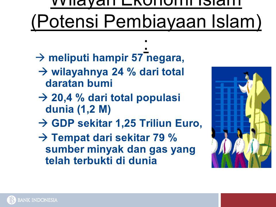 Wilayah Ekonomi Islam (Potensi Pembiayaan Islam) :  meliputi hampir 57 negara,  wilayahnya 24 % dari total daratan bumi  20,4 % dari total populasi