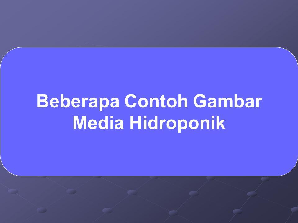 Beberapa Contoh Gambar Media Hidroponik