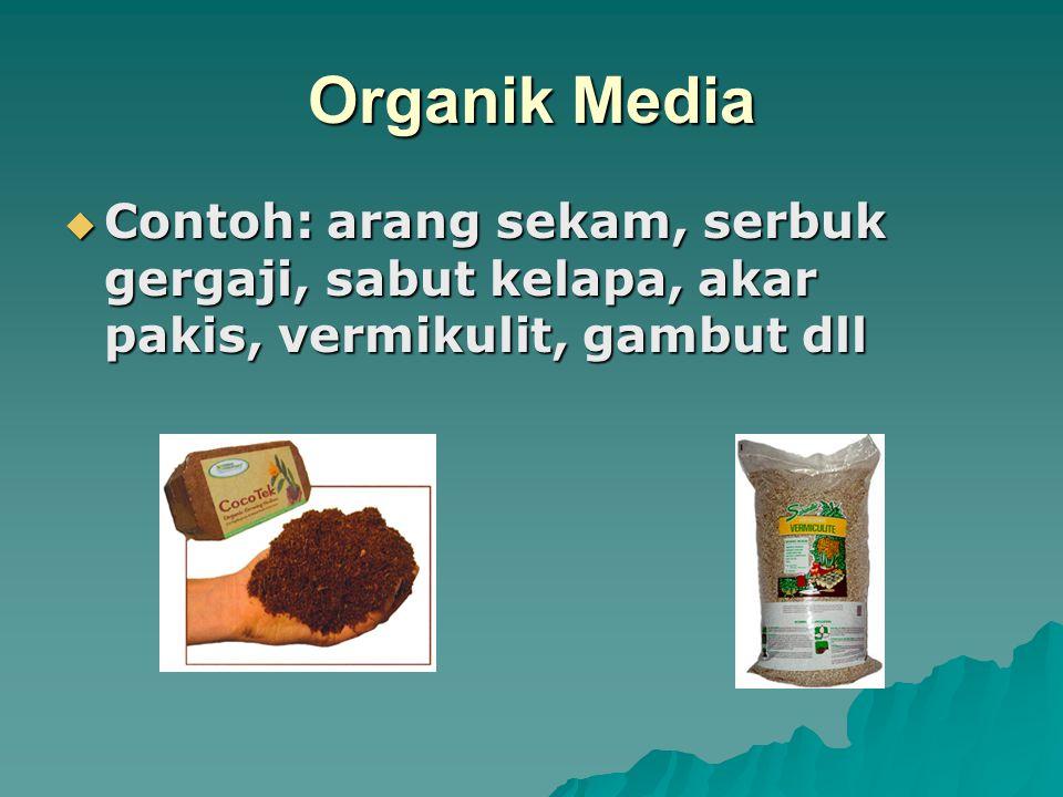 Organik Media  Contoh: arang sekam, serbuk gergaji, sabut kelapa, akar pakis, vermikulit, gambut dll