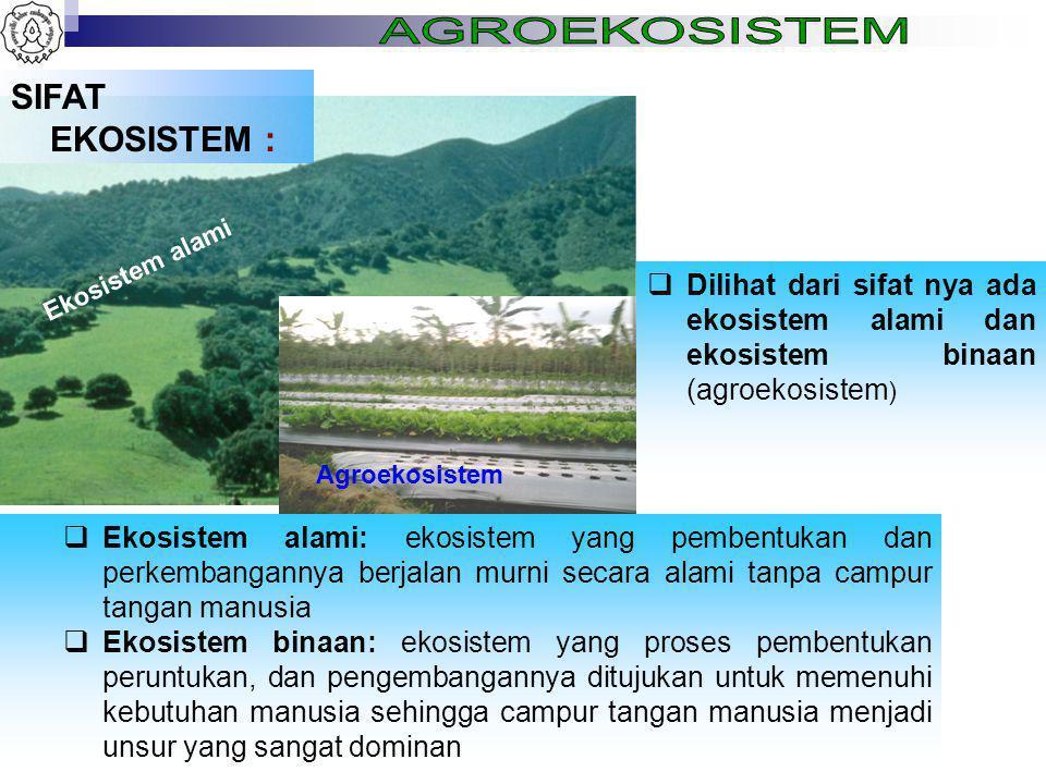 SIFAT EKOSISTEM :  Dilihat dari sifat nya ada ekosistem alami dan ekosistem binaan (agroekosistem )  Ekosistem alami: ekosistem yang pembentukan dan perkembangannya berjalan murni secara alami tanpa campur tangan manusia  Ekosistem binaan: ekosistem yang proses pembentukan peruntukan, dan pengembangannya ditujukan untuk memenuhi kebutuhan manusia sehingga campur tangan manusia menjadi unsur yang sangat dominan Ekosistem alami Agroekosistem