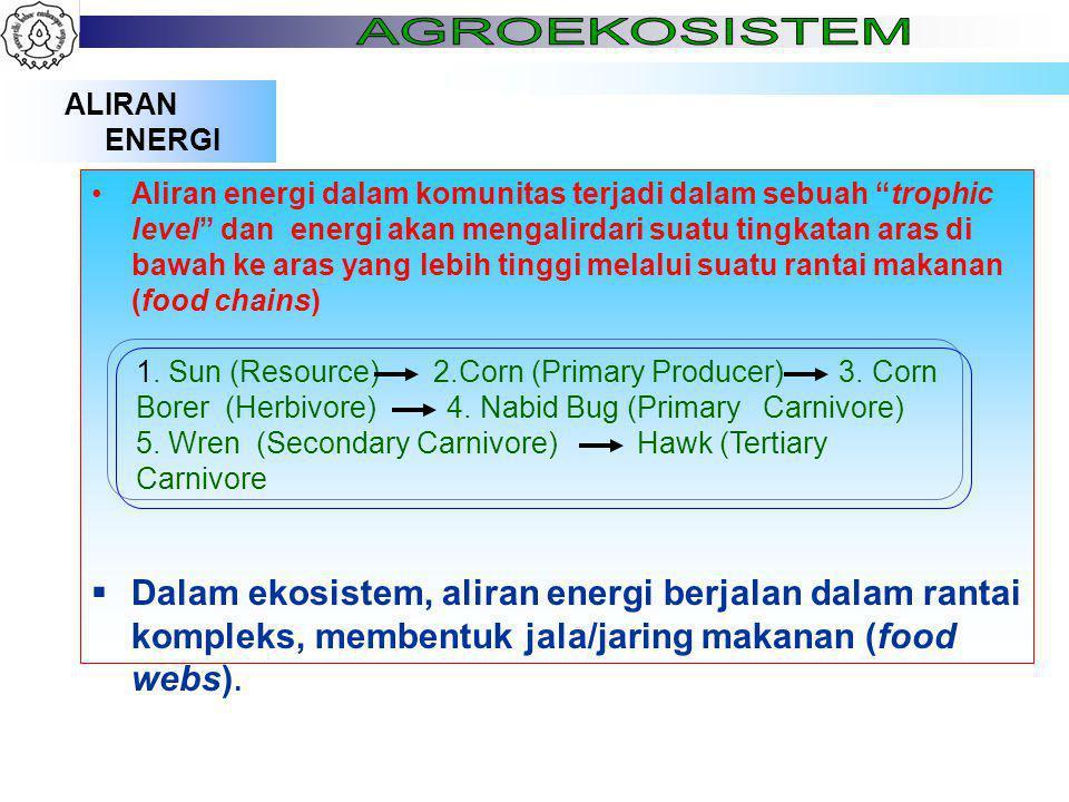 ALIRAN ENERGI Aliran energi dalam komunitas terjadi dalam sebuah trophic level dan energi akan mengalirdari suatu tingkatan aras di bawah ke aras yang lebih tinggi melalui suatu rantai makanan (food chains)  Dalam ekosistem, aliran energi berjalan dalam rantai kompleks, membentuk jala/jaring makanan (food webs).