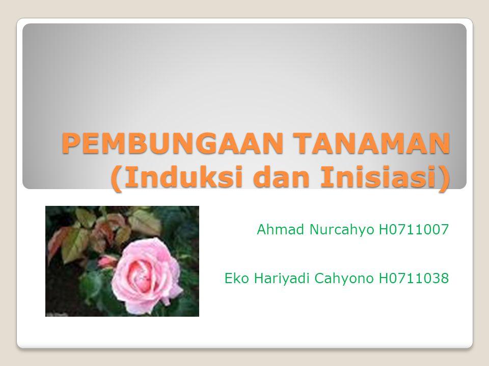 PEMBUNGAAN TANAMAN (Induksi dan Inisiasi) Ahmad Nurcahyo H0711007 Eko Hariyadi Cahyono H0711038