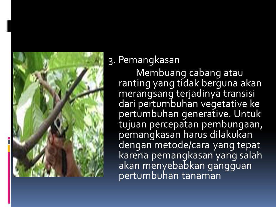 3. Pemangkasan Membuang cabang atau ranting yang tidak berguna akan merangsang terjadinya transisi dari pertumbuhan vegetative ke pertumbuhan generati