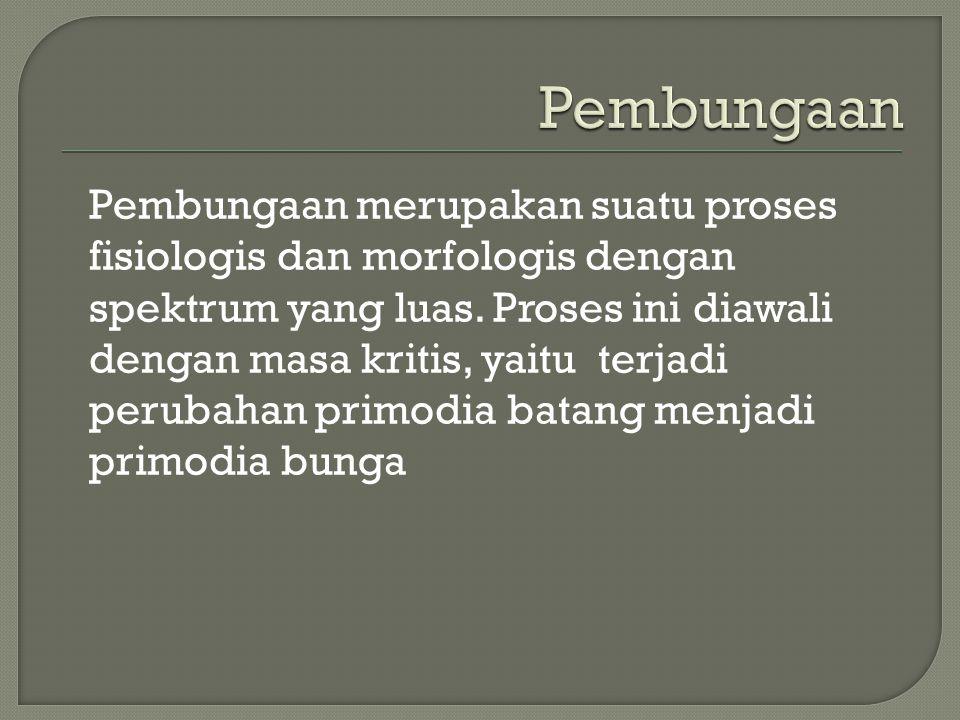 Pembungaan merupakan suatu proses fisiologis dan morfologis dengan spektrum yang luas. Proses ini diawali dengan masa kritis, yaitu terjadi perubahan