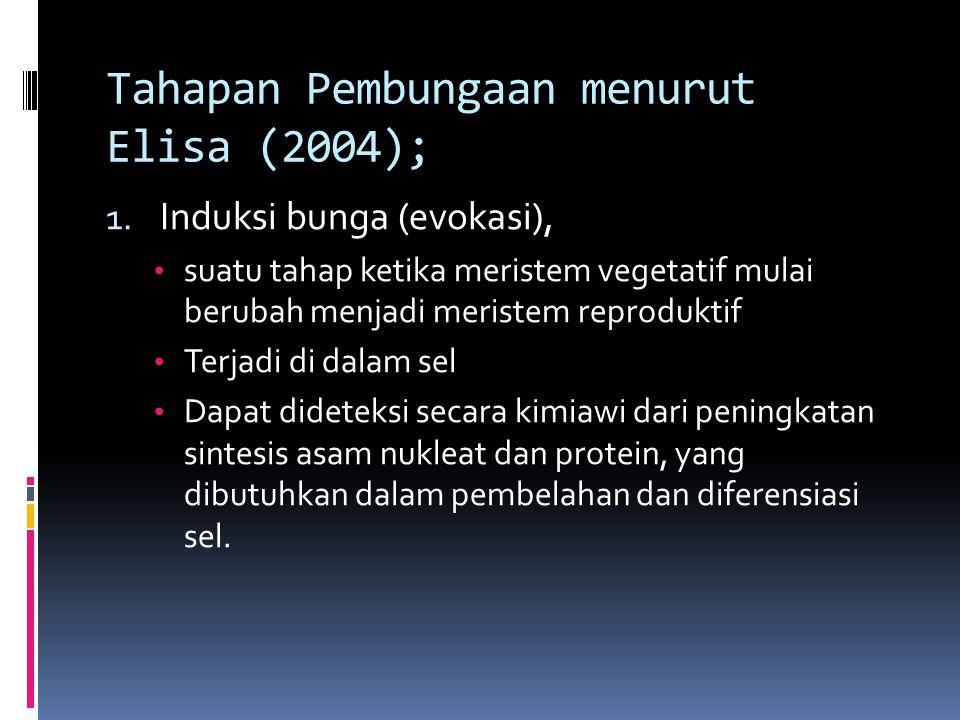 Tahapan Pembungaan menurut Elisa (2004); 1. Induksi bunga (evokasi), suatu tahap ketika meristem vegetatif mulai berubah menjadi meristem reproduktif