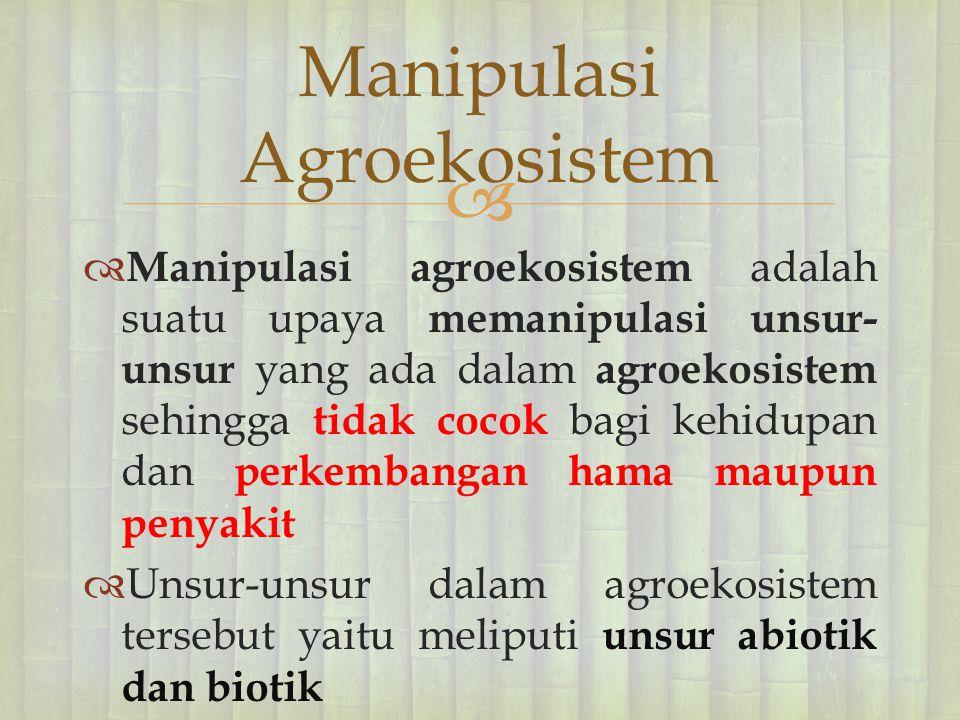   Manipulasi agroekosistem adalah suatu upaya memanipulasi unsur- unsur yang ada dalam agroekosistem sehingga tidak cocok bagi kehidupan dan perkemb