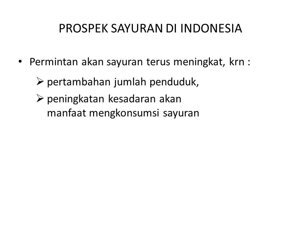 PROSPEK SAYURAN DI INDONESIA Permintan akan sayuran terus meningkat, krn :  pertambahan jumlah penduduk,  peningkatan kesadaran akan manfaat mengkon
