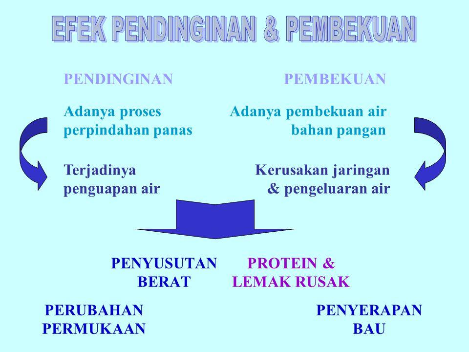 PENDINGIN UDARA: Pendinginan dengan menggunakan sumber udara bergerak  model AC (Air Conditioner)  refrigerated & freezer LEMPENG BEKU: Pendinginan