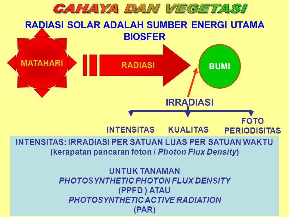 RADIASI SOLAR ADALAH SUMBER ENERGI UTAMA BIOSFER MATAHARI RADIASI BUMI IRRADIASI INTENSITASKUALITAS FOTO PERIODISITAS INTENSITAS: IRRADIASI PER SATUAN LUAS PER SATUAN WAKTU (kerapatan pancaran foton / Photon Flux Density) UNTUK TANAMAN PHOTOSYNTHETIC PHOTON FLUX DENSITY (PPFD ) ATAU PHOTOSYNTHETIC ACTIVE RADIATION (PAR)