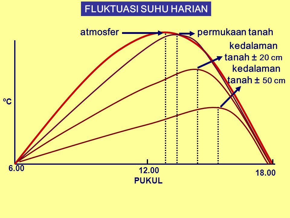 FLUKTUASI SUHU HARIAN ºC PUKUL 6.00 12.00 18.00 atmosferpermukaan tanah kedalaman tanah ± 20 cm kedalaman tanah ± 50 cm