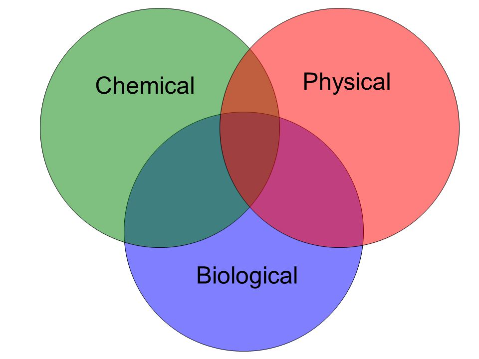 Chemical Physical Biological
