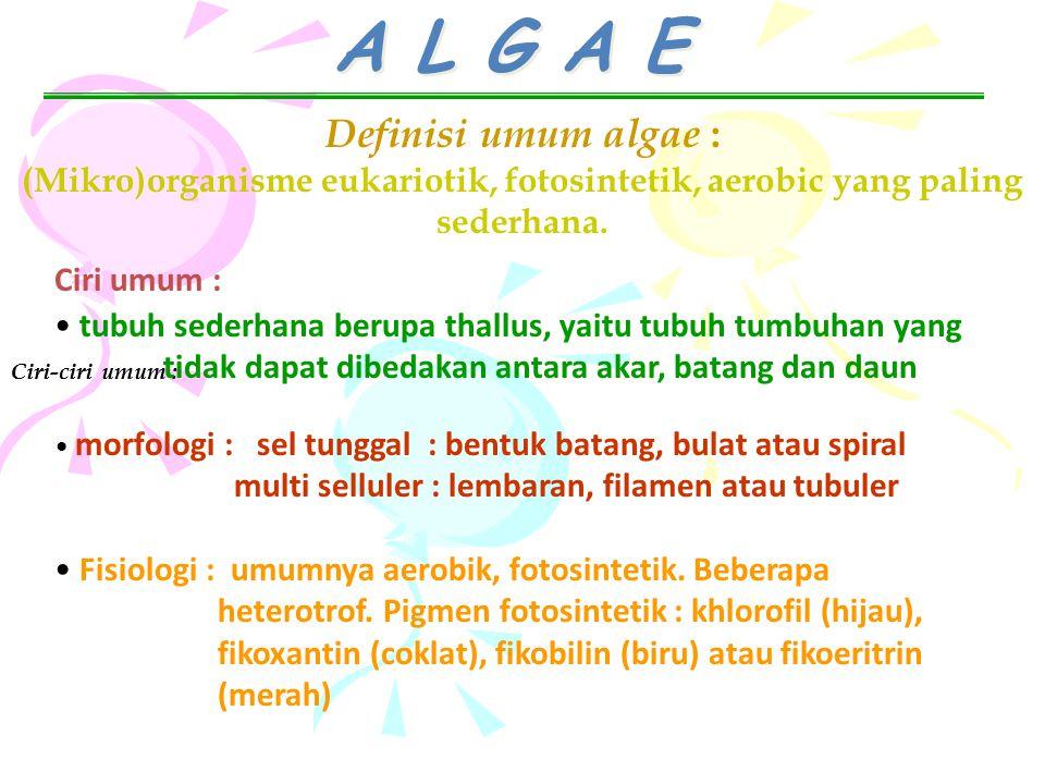 A L G A E Definisi umum algae : (Mikro)organisme eukariotik, fotosintetik, aerobic yang paling sederhana. Ciri-ciri umum : Ciri umum : tubuh sederhana
