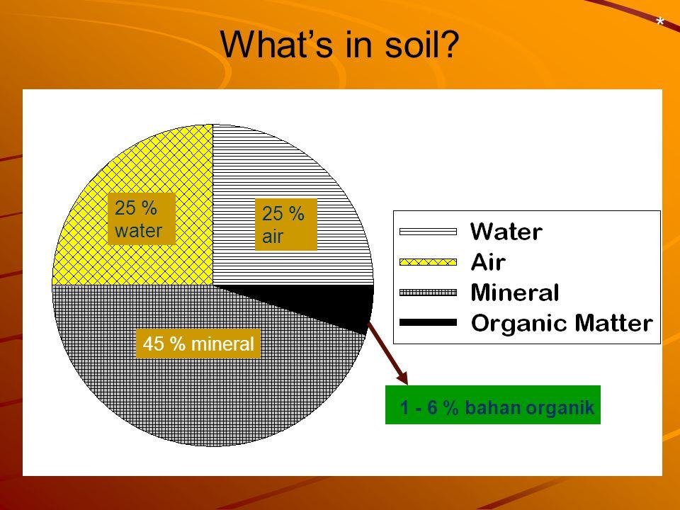 What's in soil? * 45 % mineral 25 % water 25 % air 1 - 6 % bahan organik