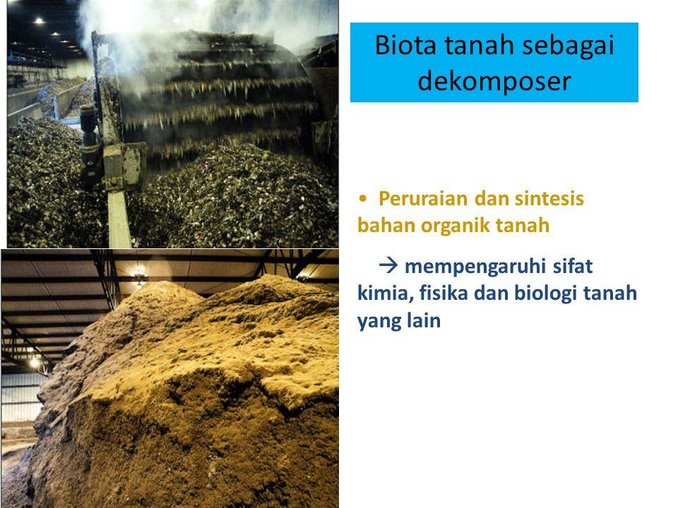 Peruraian dan sintesis bahan organik tanah  mempengaruhi sifat kimia, fisika dan biologi tanah yang lain Biota tanah sebagai dekomposer