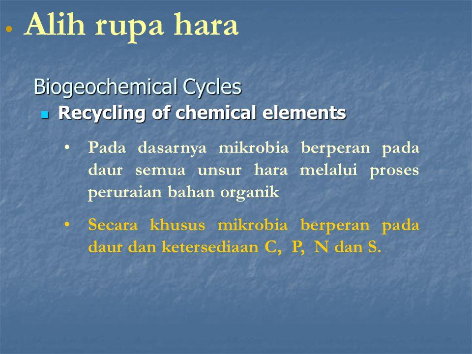 Recycling of chemical elements Recycling of chemical elements Biogeochemical Cycles Alih rupa hara Pada dasarnya mikrobia berperan pada daur semua uns