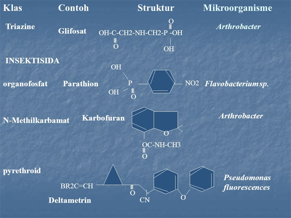 Klas Contoh Struktur Mikroorganisme TriazineArthrobacter INSEKTISIDA Glifosat OH-C-CH2-NH-CH2-P -OH O O OH NO2P O OH organofosfatParathionFlavobacterium sp.