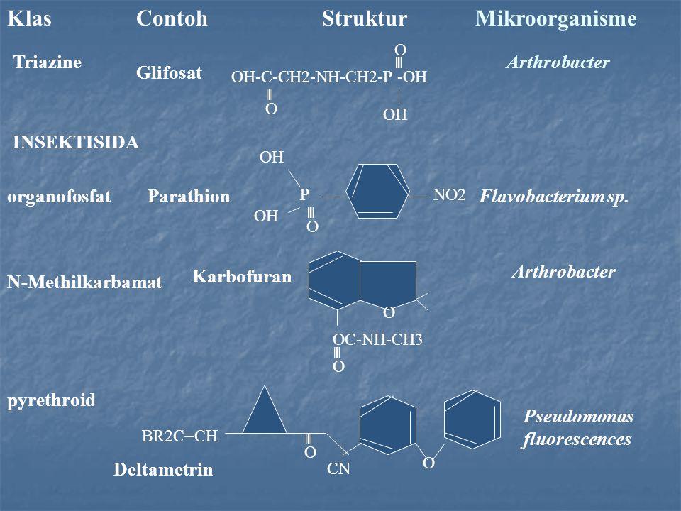 Klas Contoh Struktur Mikroorganisme TriazineArthrobacter INSEKTISIDA Glifosat OH-C-CH2-NH-CH2-P -OH O O OH NO2P O OH organofosfatParathionFlavobacteri