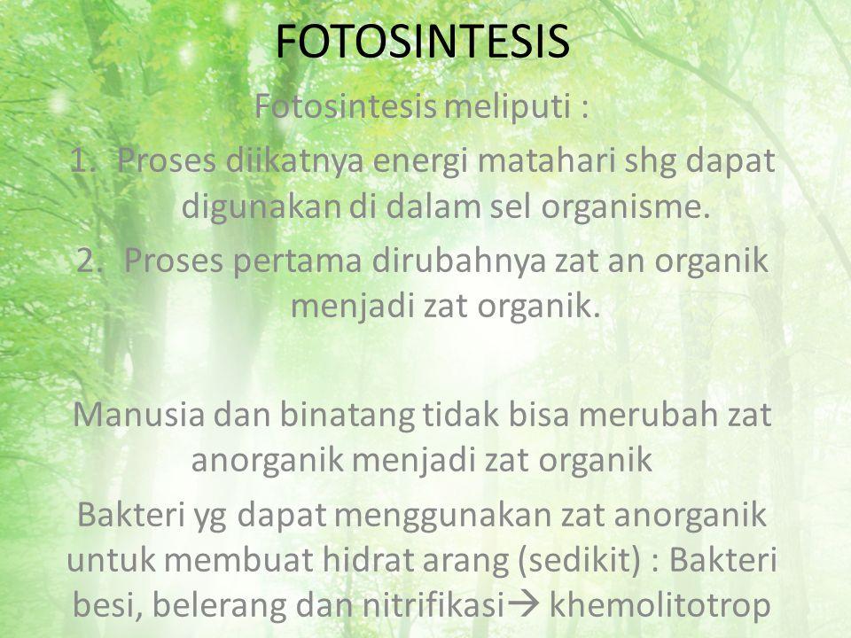 FOTOSINTESIS Fotosintesis meliputi : 1.Proses diikatnya energi matahari shg dapat digunakan di dalam sel organisme. 2.Proses pertama dirubahnya zat an
