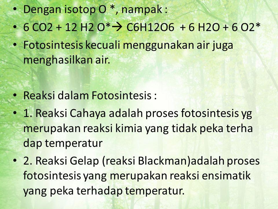 Dengan isotop O *, nampak : 6 CO2 + 12 H2 O*  C6H12O6 + 6 H2O + 6 O2* Fotosintesis kecuali menggunakan air juga menghasilkan air. Reaksi dalam Fotosi