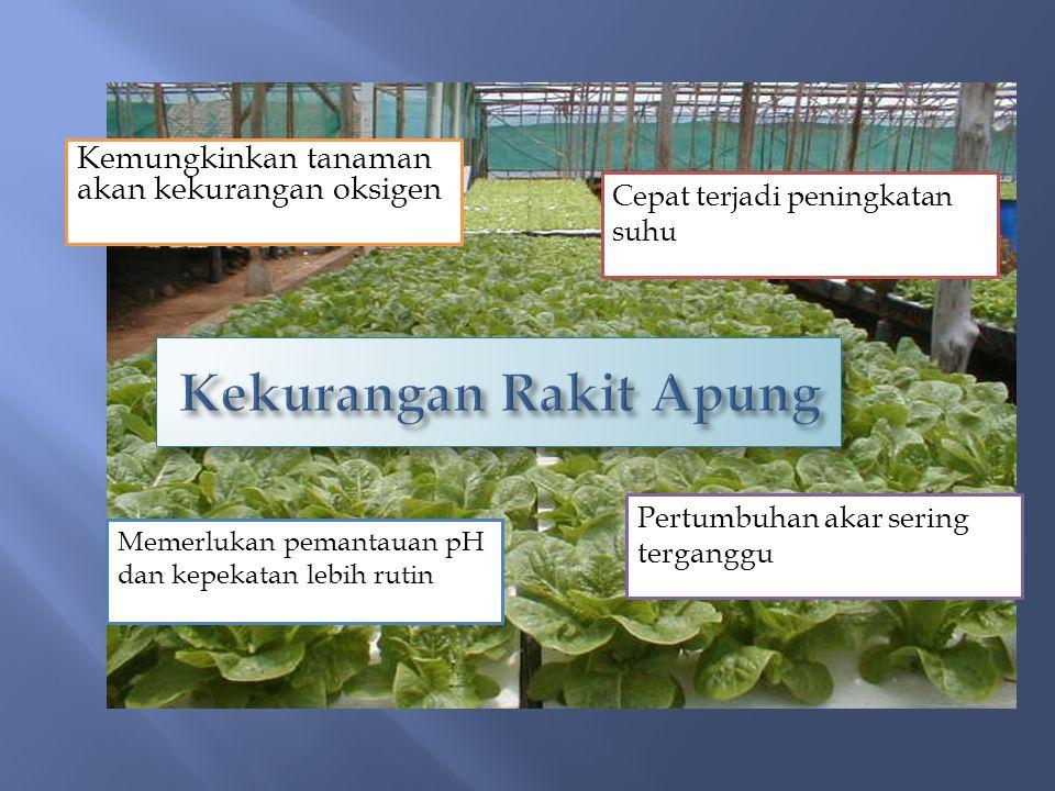 Kemungkinkan tanaman akan kekurangan oksigen Cepat terjadi peningkatan suhu Pertumbuhan akar sering terganggu Memerlukan pemantauan pH dan kepekatan l