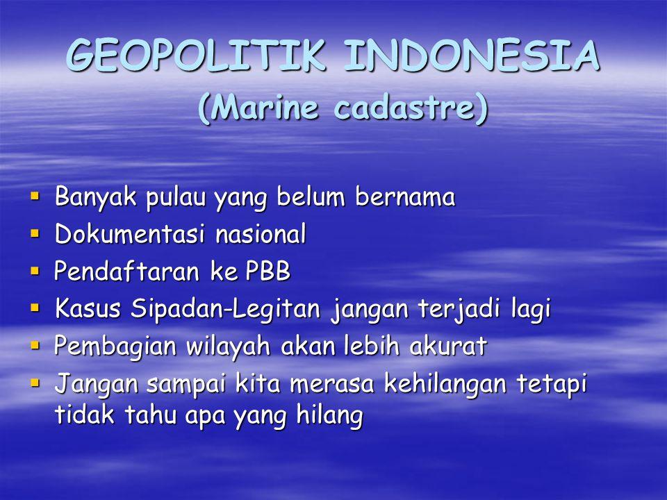 GEOPOLITIK INDONESIA Otonomi Daerah Rencana Tata Ruang Wilayah  RTRW  harus melalui Perda  Standarisasi penataan RTRW  selama ini mengacu pada negara kontinen  Pengaturan wilayah pantai kurang jelas (belum ada marine cadastre)  Kerusakan lingkungan tidak terhindar