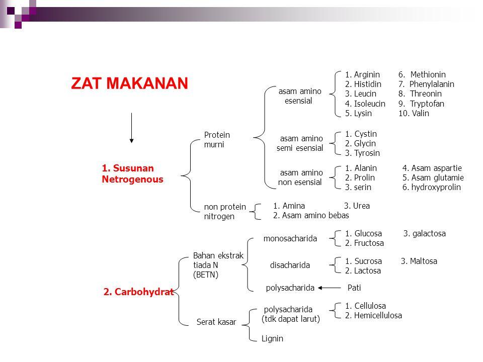 6. Methionin 7. Phenylalanin 8. Threonin 9. Tryptofan 10. Valin 1. Arginin 2. Histidin 3. Leucin 4. Isoleucin 5. Lysin 1. Cystin 2. Glycin 3. Tyrosin