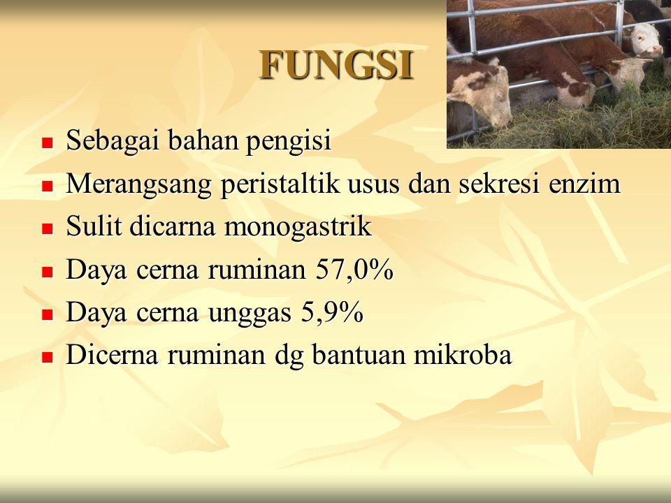 FUNGSI Sebagai bahan pengisi Sebagai bahan pengisi Merangsang peristaltik usus dan sekresi enzim Merangsang peristaltik usus dan sekresi enzim Sulit d