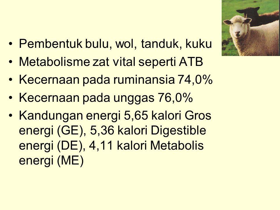 Pembentuk bulu, wol, tanduk, kuku Metabolisme zat vital seperti ATB Kecernaan pada ruminansia 74,0% Kecernaan pada unggas 76,0% Kandungan energi 5,65