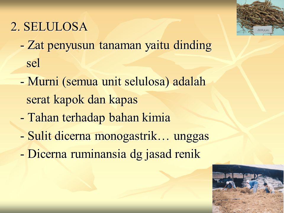 HETEROPOLISAKARIDA 1.