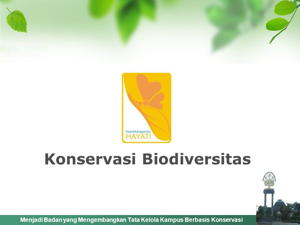 Menjadi Badan yang Mengembangkan Tata Kelola Kampus Berbasis Konservasi Pengembangan Biodiversitas Hutan KampusPenghijauan Kampus Rumah Kupu-Kupu Kebun Wisata Pendidikan
