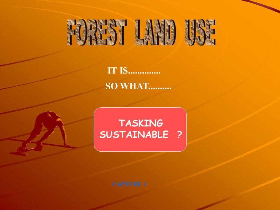  Sektor Pertanian - Pengembangan agribisnis pertanian - Peningkatan ketahanan pangan  Kebijakan/program perkebunan - Pengembangan KIMBUN (Kawasan Industri Masyarakat Perkebunan)