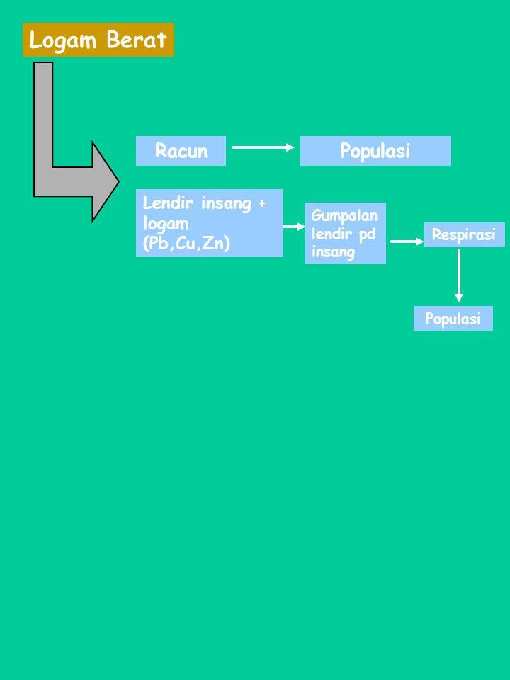 Logam Berat Racun Lendir insang + logam (Pb,Cu,Zn) Gumpalan lendir pd insang Populasi Respirasi Populasi