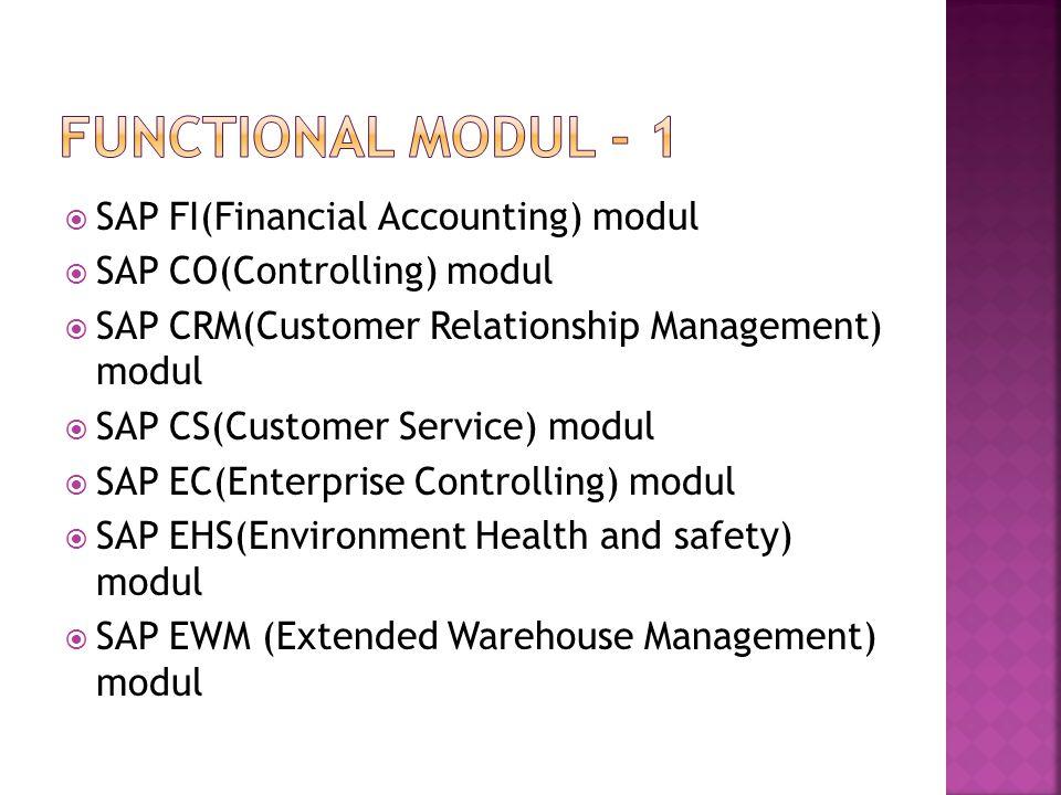  SAP MM(Material Management) modul  SAP HR(Human Resources) modul  SAP PP(Production Planning) modul  SAP QM(Quality Management) modul  SAP SD(Sales and Distribution) modul yang menurut survey merupakan modul yang sering dipakai.