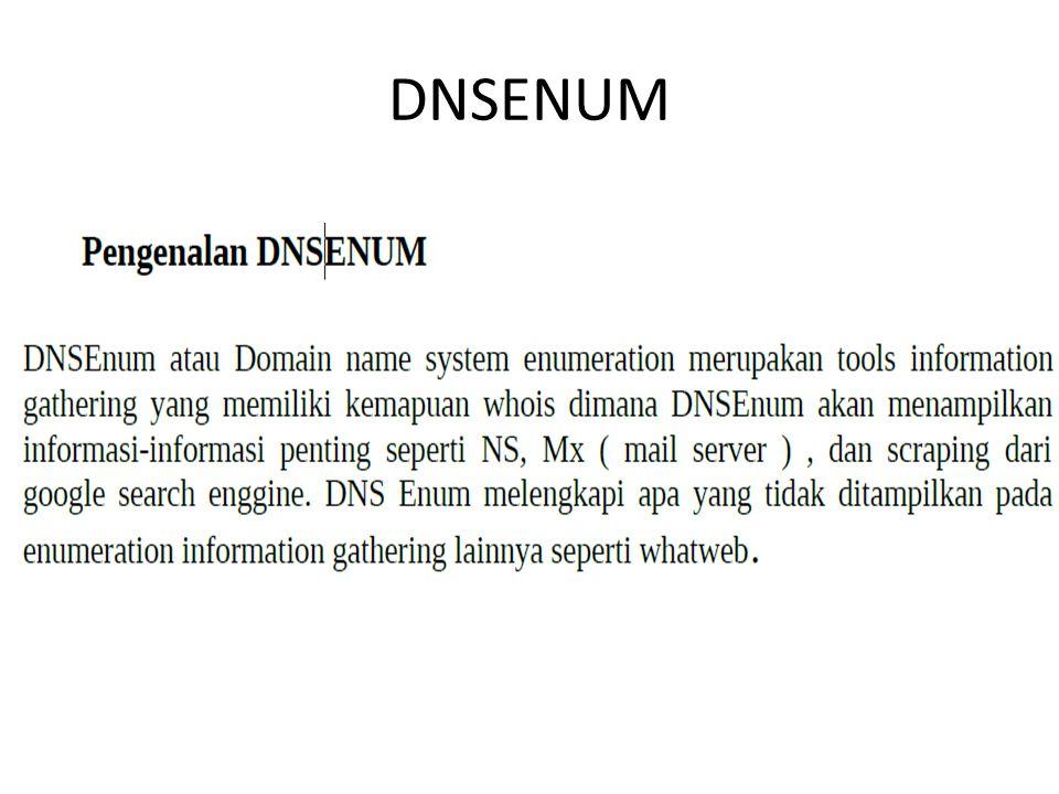 DNSENUM