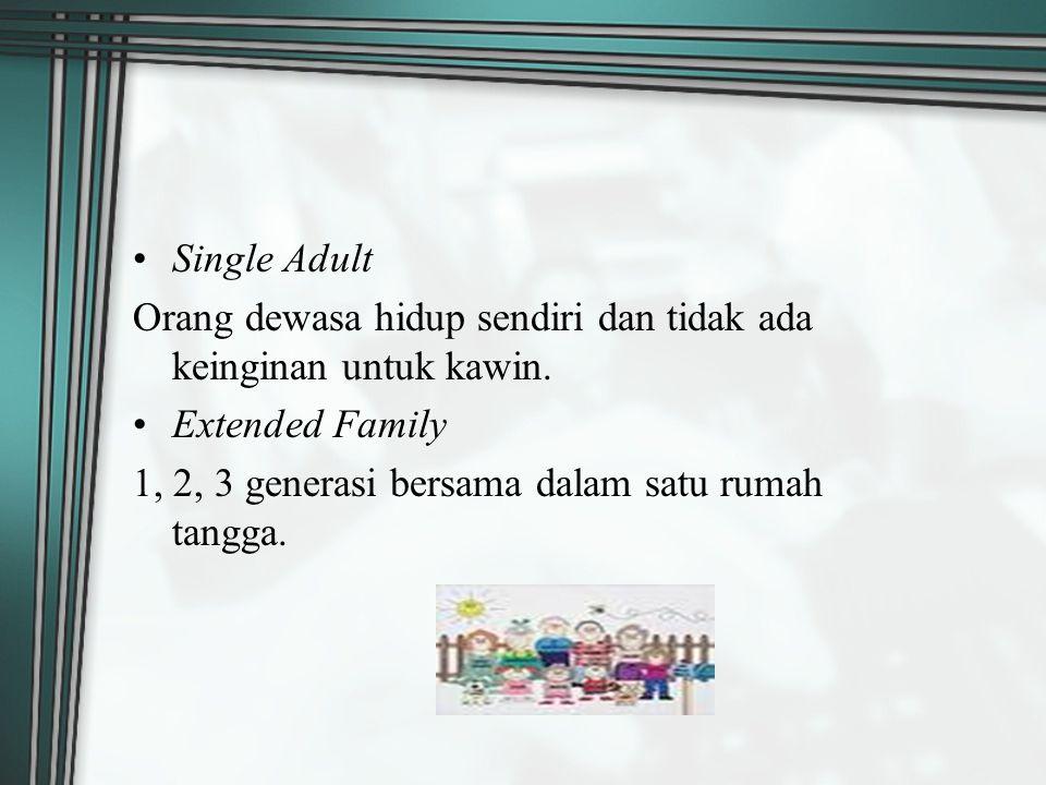 Single Adult Orang dewasa hidup sendiri dan tidak ada keinginan untuk kawin. Extended Family 1, 2, 3 generasi bersama dalam satu rumah tangga.