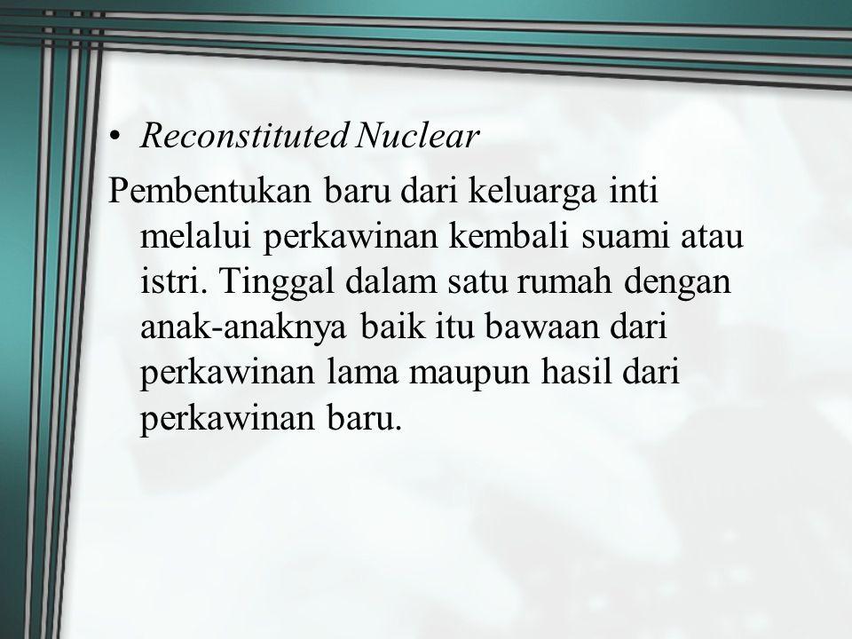 Reconstituted Nuclear Pembentukan baru dari keluarga inti melalui perkawinan kembali suami atau istri. Tinggal dalam satu rumah dengan anak-anaknya ba