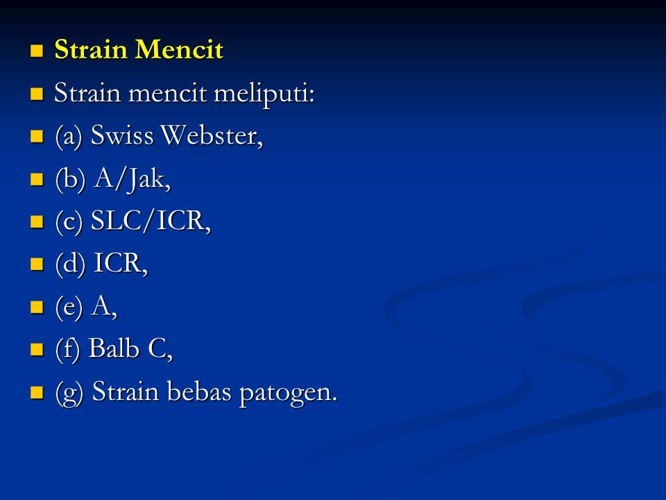 Strain Mencit Strain Mencit Strain mencit meliputi: Strain mencit meliputi: (a) Swiss Webster, (a) Swiss Webster, (b) A/Jak, (b) A/Jak, (c) SLC/ICR, (