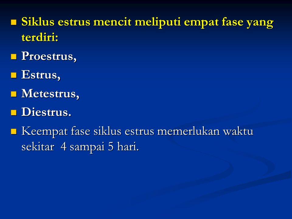 Siklus estrus mencit meliputi empat fase yang terdiri: Siklus estrus mencit meliputi empat fase yang terdiri: Proestrus, Proestrus, Estrus, Estrus, Me