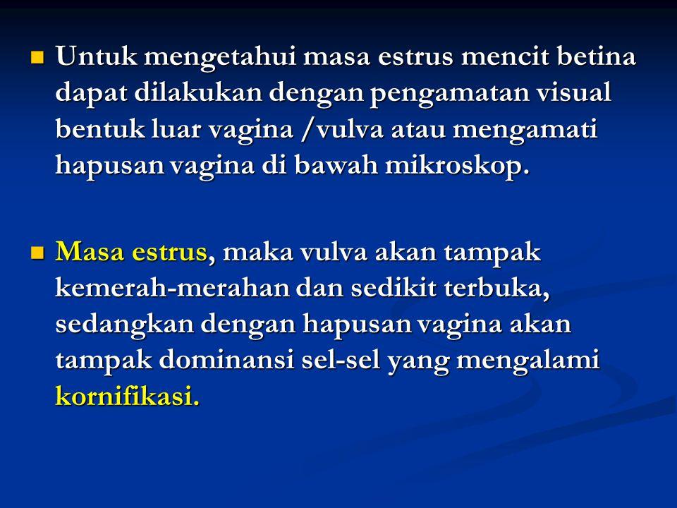 Untuk mengetahui masa estrus mencit betina dapat dilakukan dengan pengamatan visual bentuk luar vagina /vulva atau mengamati hapusan vagina di bawah m