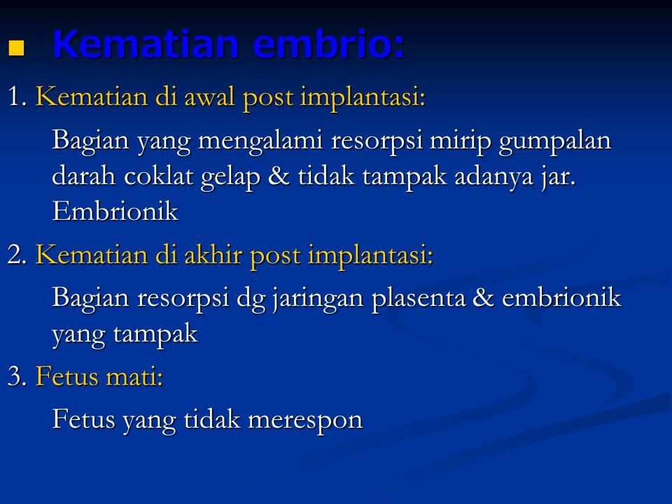 Kematian embrio: Kematian embrio: 1. Kematian di awal post implantasi: Bagian yang mengalami resorpsi mirip gumpalan darah coklat gelap & tidak tampak