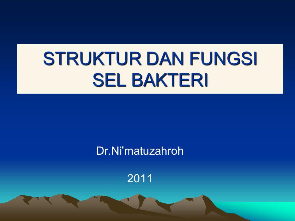 STRUKTUR DAN FUNGSI SEL BAKTERI Dr.Ni'matuzahroh 2011