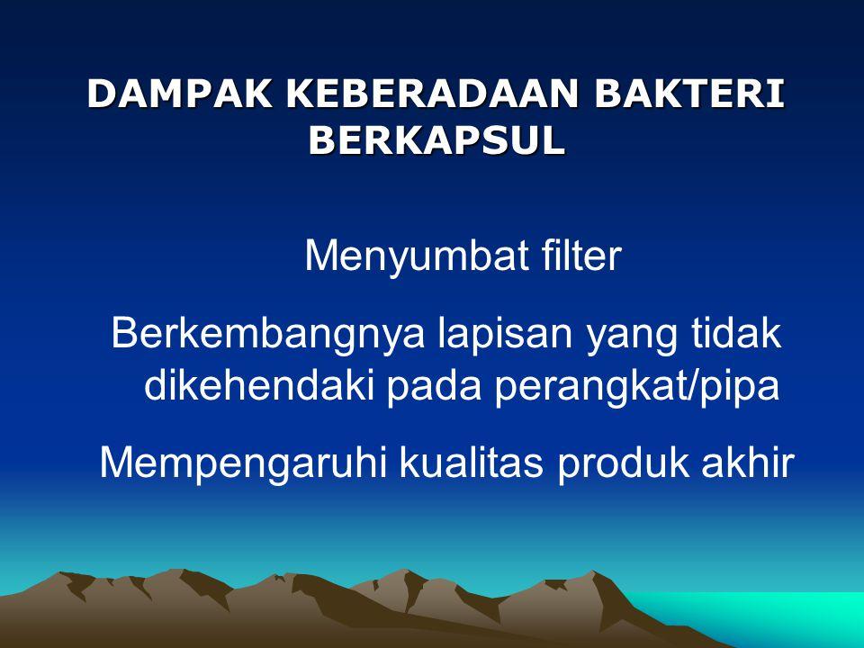 DAMPAK KEBERADAAN BAKTERI BERKAPSUL Menyumbat filter Berkembangnya lapisan yang tidak dikehendaki pada perangkat/pipa Mempengaruhi kualitas produk akh