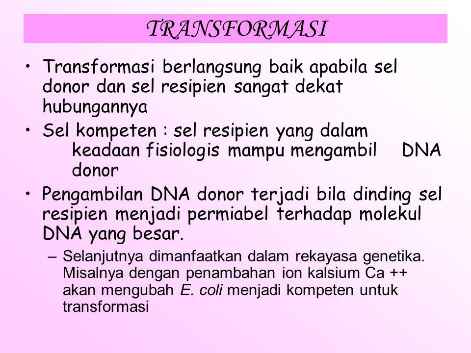TRANSFORMASI Sel resipien akan mengambil DNA terlarut yang dilepaskan oleh sel donor. Umumnya, pelepasan DNA sel donor oleh karena sel donor mengalami