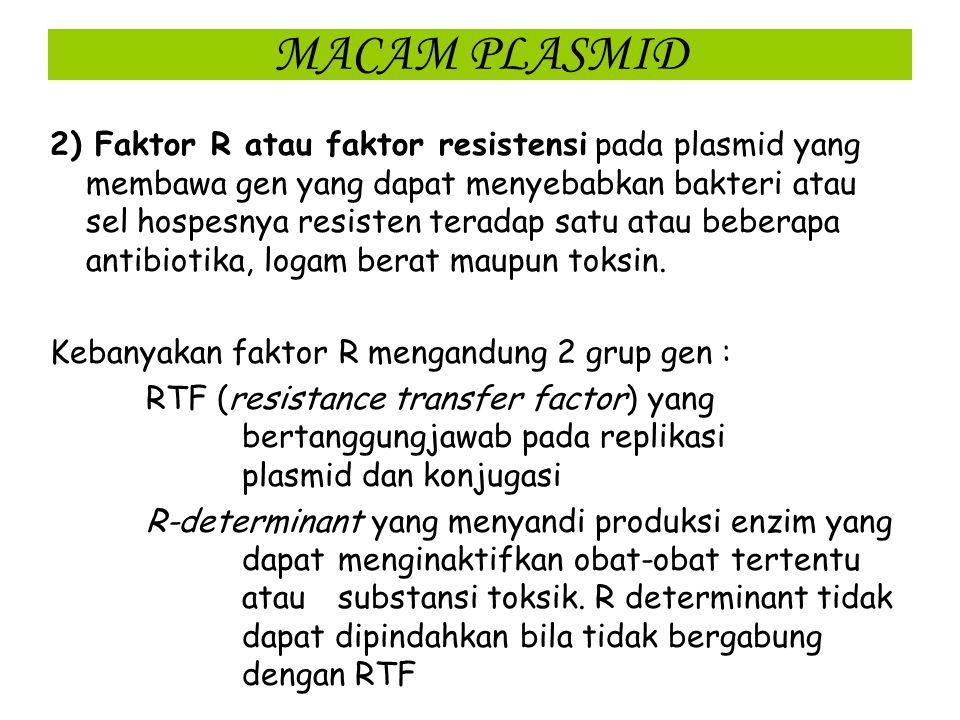 MACAM PLASMID Plasmid dapat membawa berbagai macam gen penyandi :  produksi toksin  resistensi terhadap antibiotika  Resistensi logam berat atau ba
