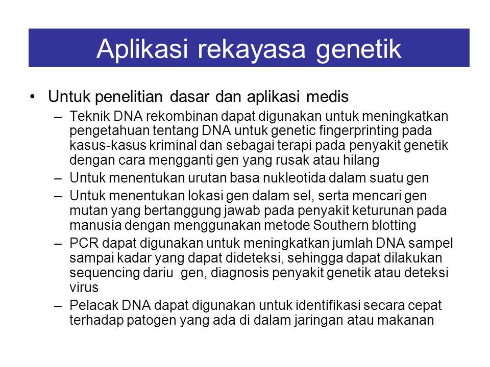 APLIKASI REKAYASA GENETIK Untuk keperluan pengobatan –Gen sintetis diikatkan pada gen β-galaktosidase (lacZ) dalam vektor plasmid, kemudian diinsersik